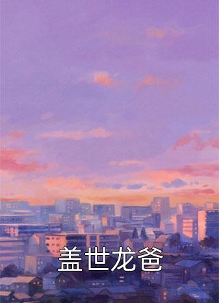 盖世龙爸小说