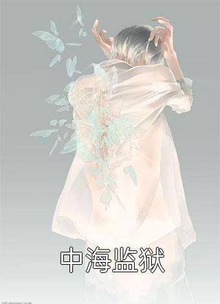 中海监狱小说