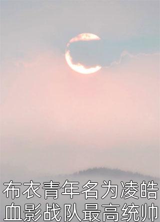 布衣青年名为凌皓血影战队最高统帅西境之王小说