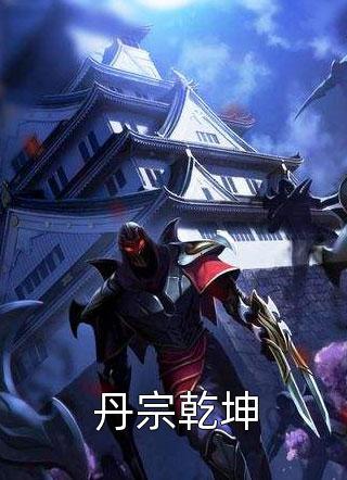 丹宗乾坤小说