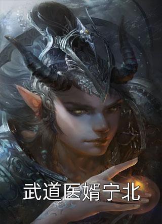 武道医婿宁北小说