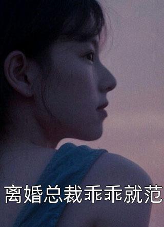 离婚总裁乖乖就范小说