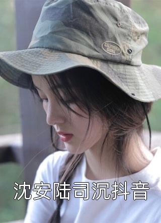 沈安陆司沉抖音小说