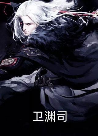 卫渊司小说