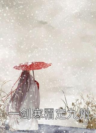 一剑寒霜定九州小说