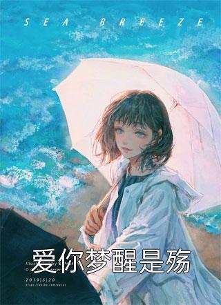 爱你梦醒是殇小说