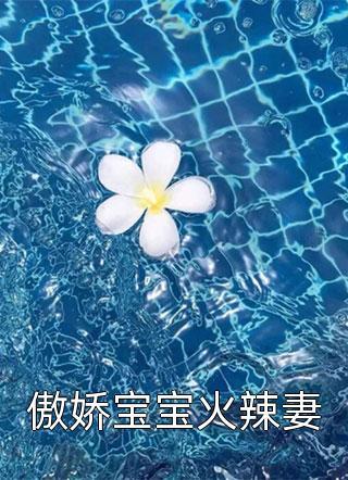傲娇宝宝火辣妻小说
