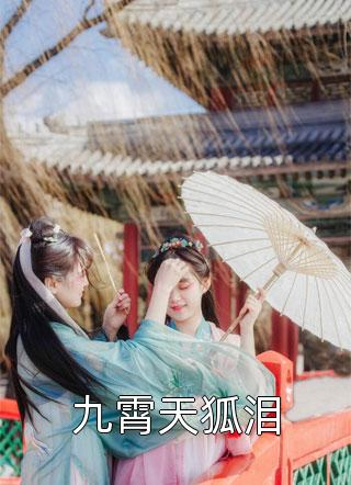 九霄天狐泪小说