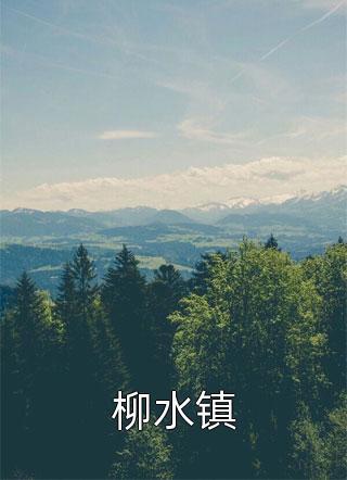 柳水镇小说