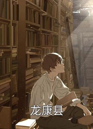 龙康县小说