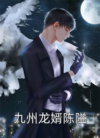 九州龙婿陈隘小说